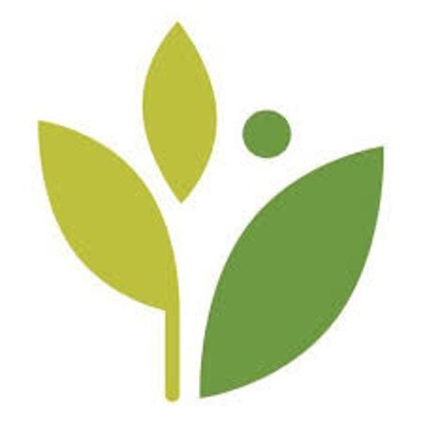 athena favicon logo.jpg